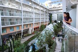 Central Park on Allure of the Seas