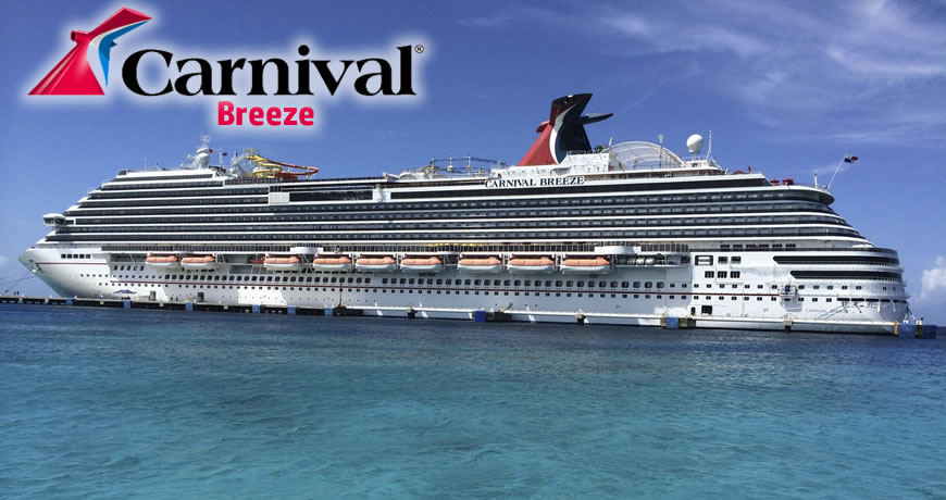 carnival cruise lines case essay example Essay the history of the carnival corporation begins in 1972, when ted arison set up carnival cruise lines as a subsidiary of the american international travel service the first ship ran aground, but arison remained steadfast in achieving his vision of a cruise line offering affordable vacation packages to middle-income consumers by 1977, carnival had three ships, and ten years later, as the.